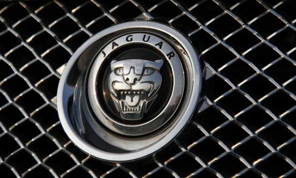Jaguar specialised skills